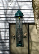 Bird feeder at my place